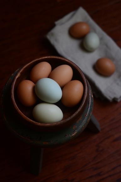 Farm Eggs 6021