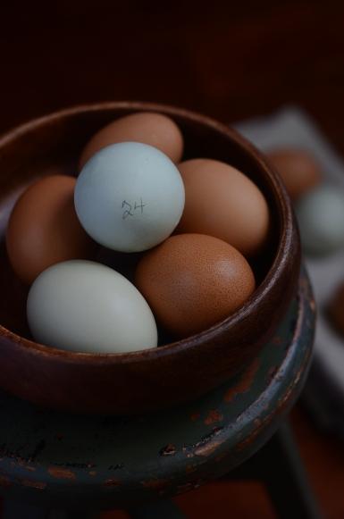 Farm Eggs 6026B